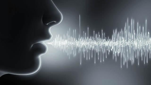 Artikel: Sprachanalyse aus der deutschen Cloud: Auf einen Blick mit einem Klick